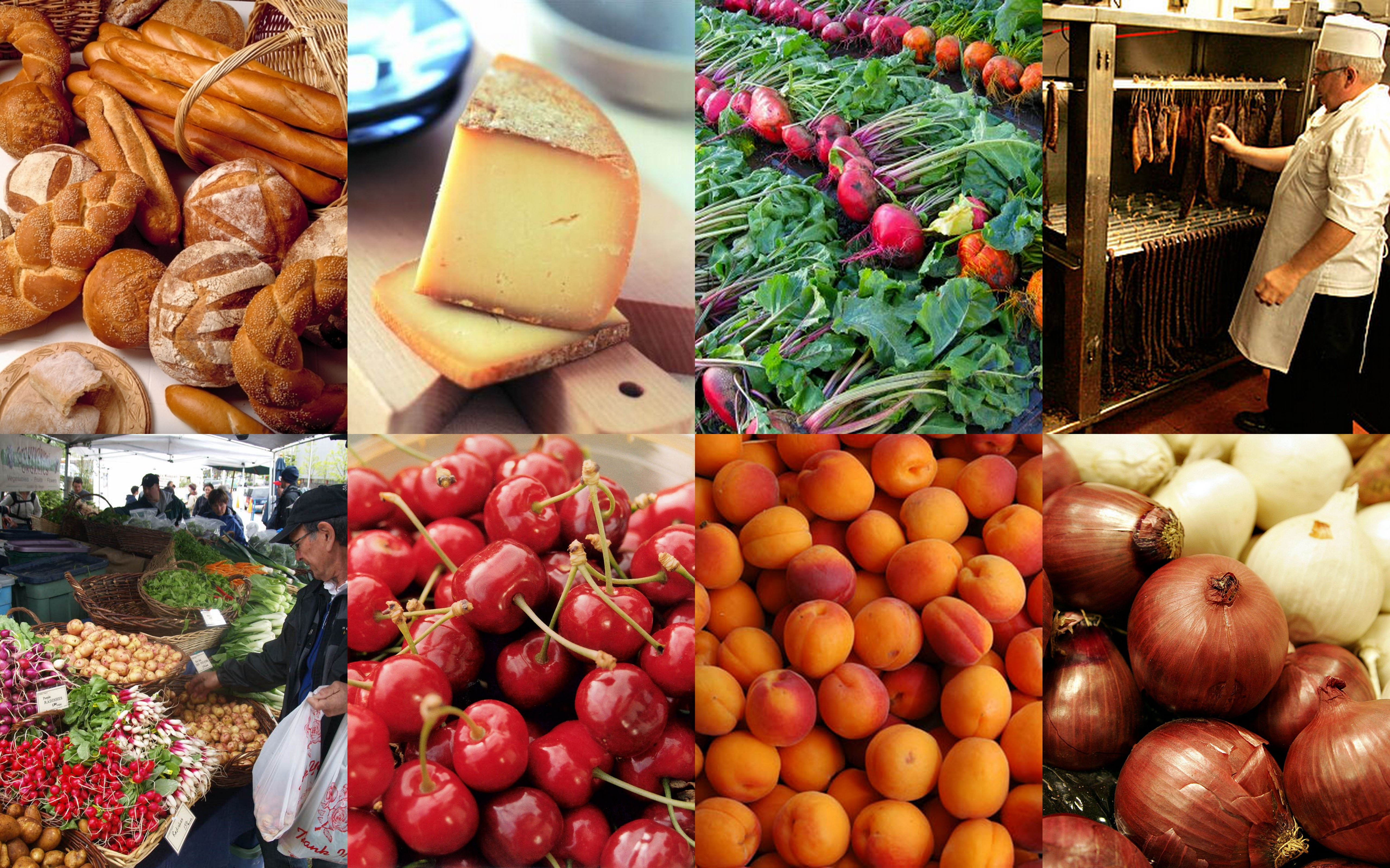 Harvest Festival Food and Craft Market: Applications Now ...