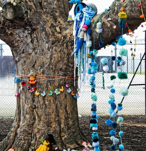 Yarn Bomb, Photo by Stephanie Moore